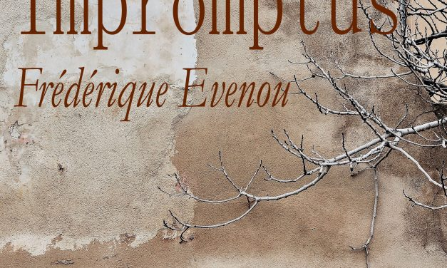 IMPROMPTUS – PHOTOGRAPHIES – FREDERIQUE EVENOU