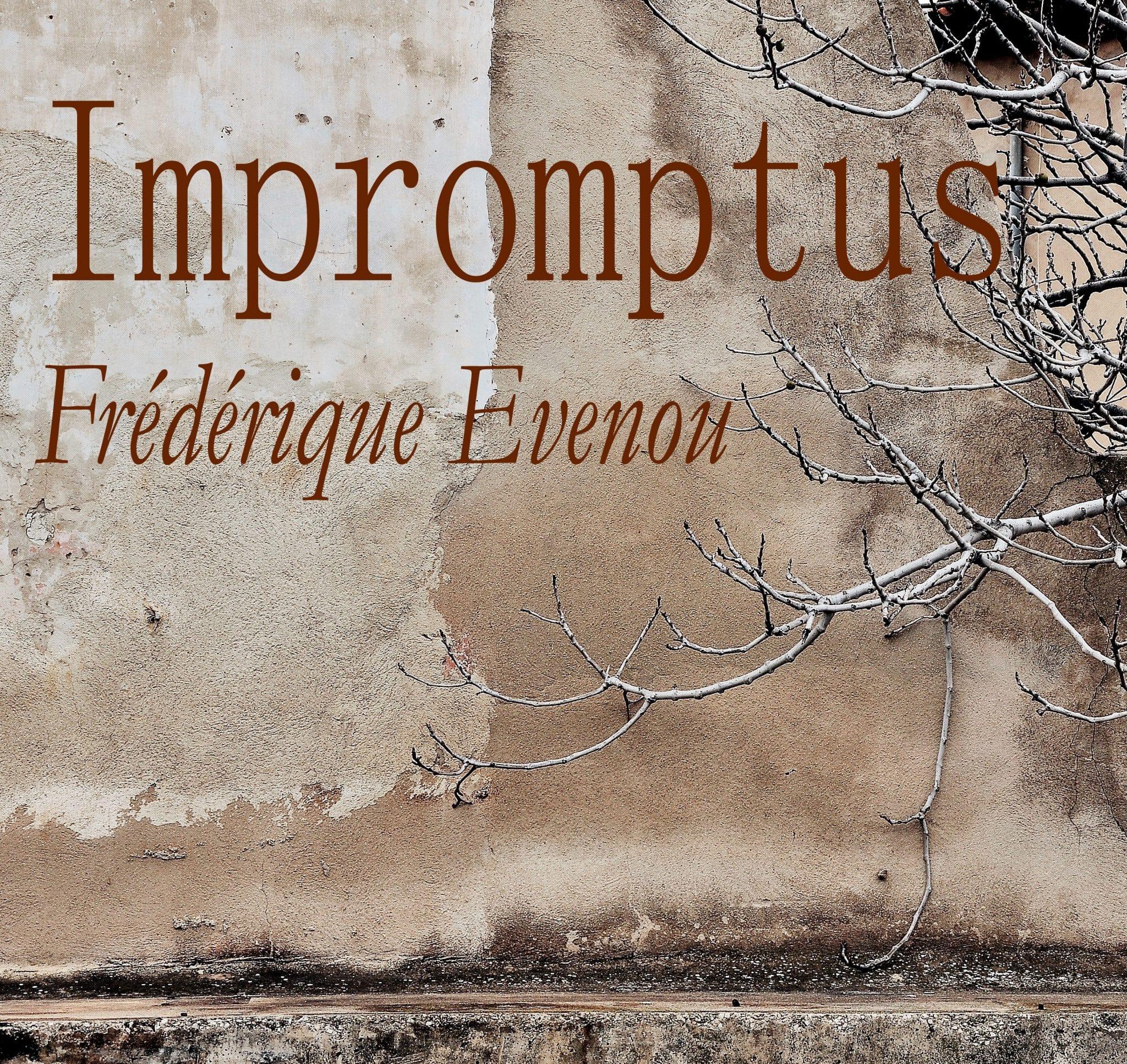 IMPROMPTUS – PHOTOGRAPHIES – FREDERIQUE EVENOU